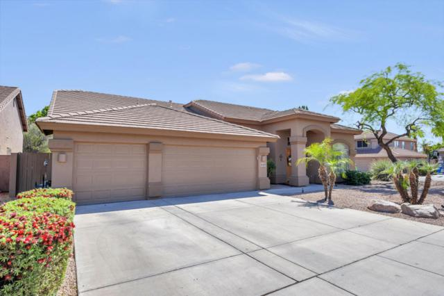5107 E Villa Rita Drive, Scottsdale, AZ 85254 (MLS #5758358) :: Kortright Group - West USA Realty