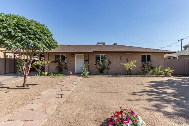 715 E Buffalo Street, Chandler, AZ 85225 (MLS #5758367) :: My Home Group