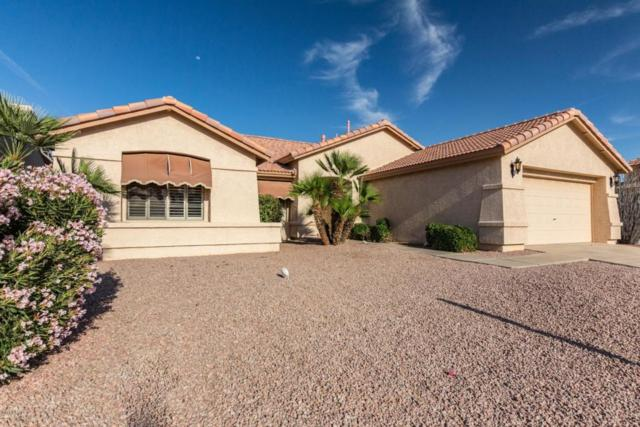 24025 S Sunny Side Drive, Sun Lakes, AZ 85248 (MLS #5758391) :: CC & Co. Real Estate Team