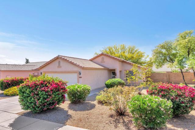 15205 W Elko Drive, Surprise, AZ 85374 (MLS #5758486) :: My Home Group