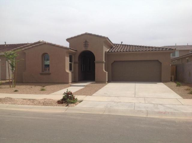 22543 E Duncan Street, Queen Creek, AZ 85142 (MLS #5758524) :: My Home Group