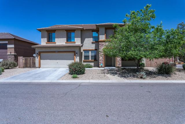 7806 W Andrea Drive, Peoria, AZ 85383 (MLS #5758659) :: The Laughton Team