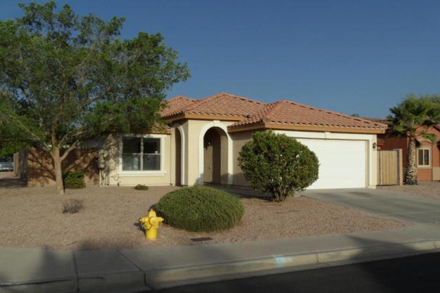 213 S Valle Verde, Mesa, AZ 85208 (MLS #5758829) :: My Home Group