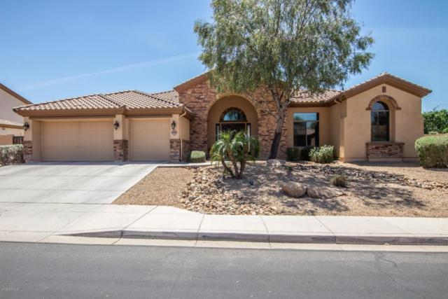 9291 W Andrea Drive, Peoria, AZ 85383 (MLS #5758961) :: The Daniel Montez Real Estate Group