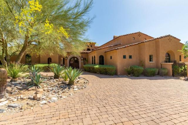 11071 E Saguaro Canyon Trail, Scottsdale, AZ 85255 (MLS #5759012) :: Riddle Realty
