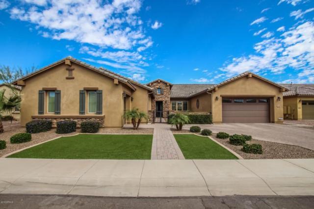 2950 E Athena Avenue, Gilbert, AZ 85297 (MLS #5759221) :: My Home Group