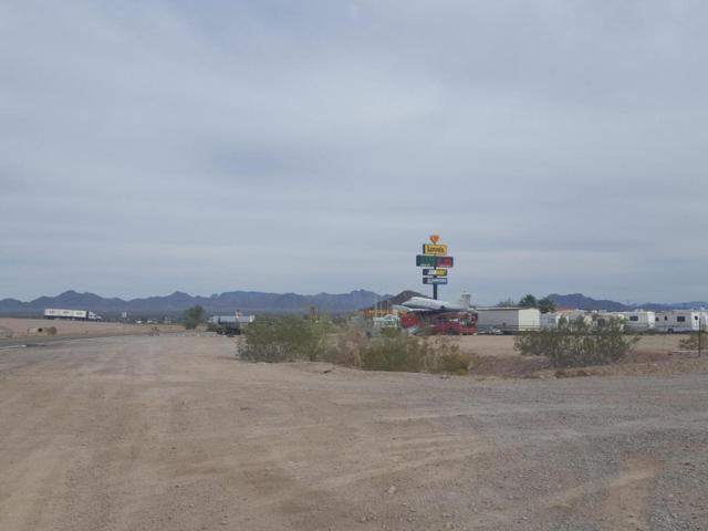 1925 W Dome Rock Road, Quartzsite, AZ 85346 (MLS #5759340) :: Yost Realty Group at RE/MAX Casa Grande