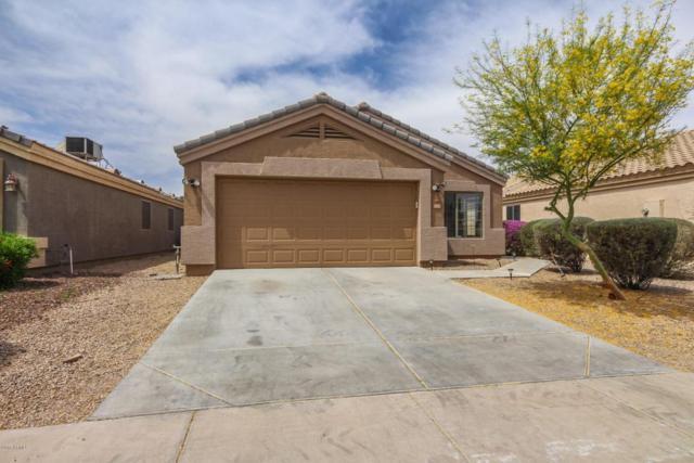 14808 N 124TH Lane, El Mirage, AZ 85335 (MLS #5759351) :: Essential Properties, Inc.