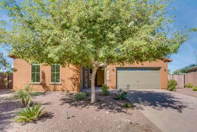 2982 S 186TH Lane, Goodyear, AZ 85338 (MLS #5759442) :: Kortright Group - West USA Realty