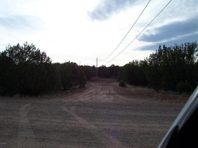 8340 Bourdon Place, Show Low, AZ 85901 (MLS #5759540) :: Brett Tanner Home Selling Team