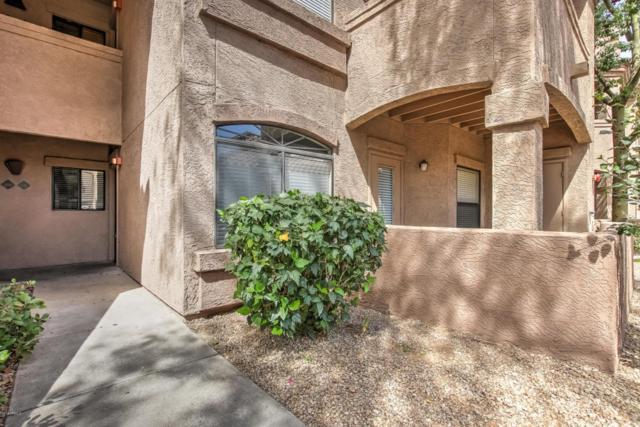 15095 N Thompson Peak Parkway #1091, Scottsdale, AZ 85260 (MLS #5759563) :: Brett Tanner Home Selling Team