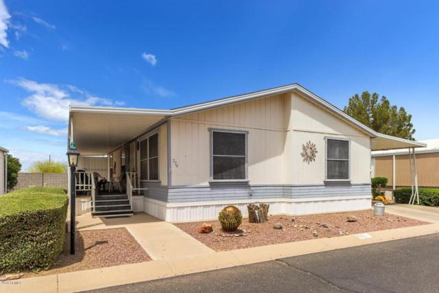 450 W Sunwest Drive #279, Casa Grande, AZ 85122 (MLS #5759629) :: The Daniel Montez Real Estate Group