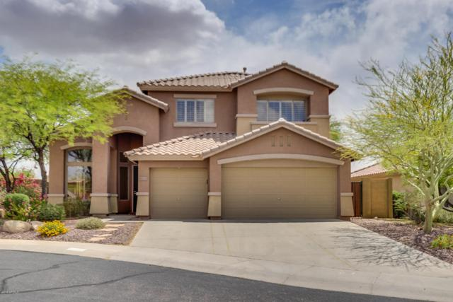 41331 N Panther Creek Court, Anthem, AZ 85086 (MLS #5759836) :: The Everest Team at My Home Group