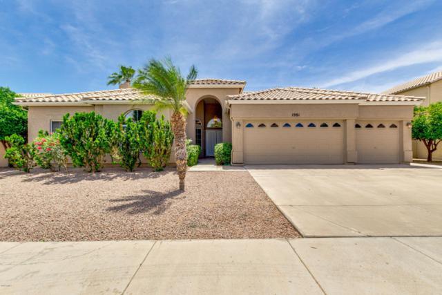 1981 E Todd Drive, Tempe, AZ 85283 (MLS #5759854) :: Yost Realty Group at RE/MAX Casa Grande