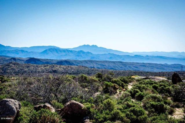 0000 N Old Mine Road, Cave Creek, AZ 85331 (MLS #5759872) :: Scott Gaertner Group