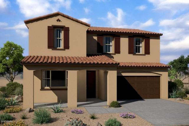 1636 N 209th Avenue, Buckeye, AZ 85396 (MLS #5760000) :: Desert Home Premier