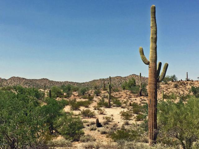 0 N Homestead Lane, Queen Creek, AZ 85142 (MLS #5760018) :: The Daniel Montez Real Estate Group