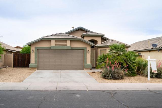 12566 W Desert Rose Road, Avondale, AZ 85392 (MLS #5760040) :: My Home Group