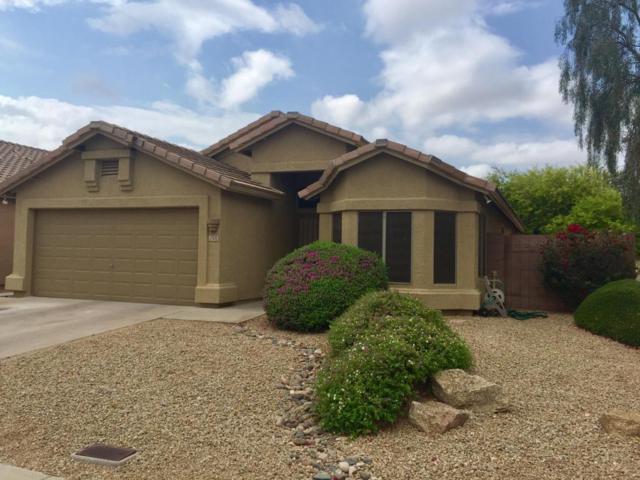 2505 E Paraiso Drive, Phoenix, AZ 85024 (MLS #5760080) :: Essential Properties, Inc.