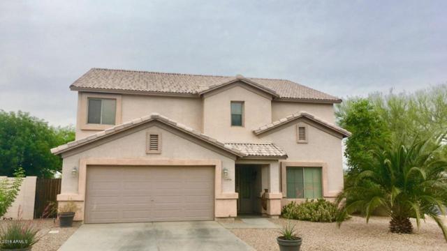 40936 N Cambria Lane, San Tan Valley, AZ 85140 (MLS #5760150) :: My Home Group