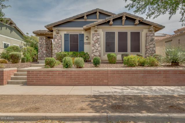 12661 N 152nd Drive, Surprise, AZ 85379 (MLS #5760225) :: Phoenix Property Group