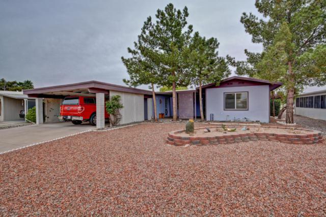 8251 E Cactus Drive, Mesa, AZ 85208 (MLS #5760248) :: The Daniel Montez Real Estate Group