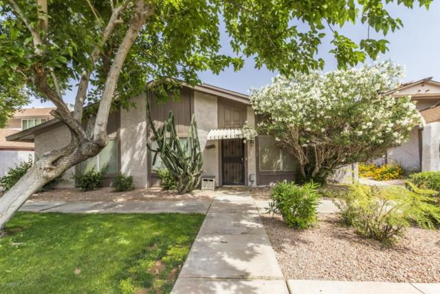 1029 N 84TH Place, Scottsdale, AZ 85257 (MLS #5760412) :: The Daniel Montez Real Estate Group