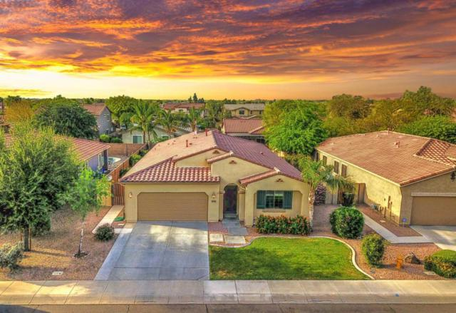 3716 E Andre Avenue, Gilbert, AZ 85298 (MLS #5760431) :: Arizona 1 Real Estate Team