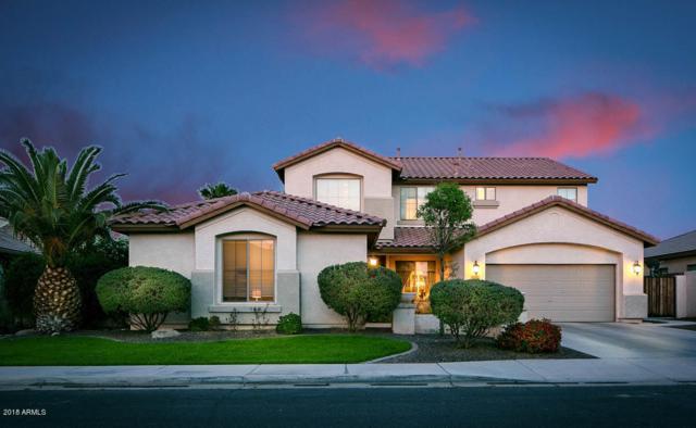 6717 S Moccasin Trail, Gilbert, AZ 85298 (MLS #5760432) :: Arizona 1 Real Estate Team