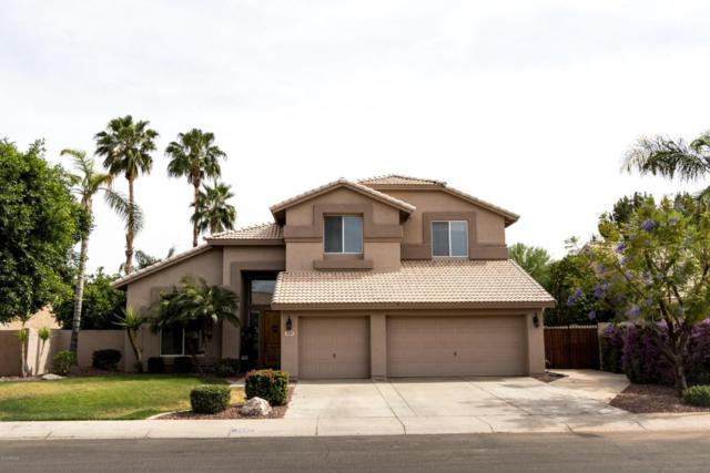 3667 E Encinas Avenue, Gilbert, AZ 85234 (MLS #5760511) :: Lifestyle Partners Team