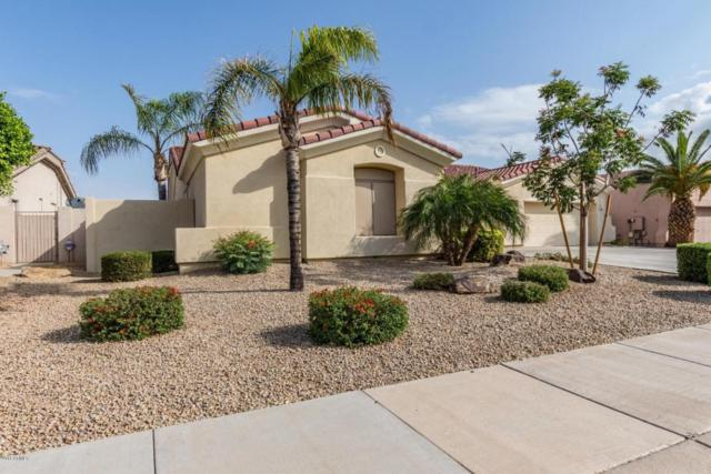 14478 W Verde Lane, Goodyear, AZ 85395 (MLS #5760635) :: Lux Home Group at  Keller Williams Realty Phoenix