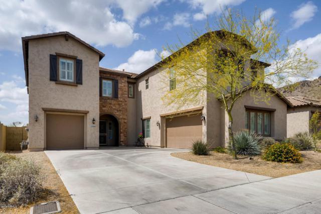 27486 N 89TH Drive, Peoria, AZ 85383 (MLS #5760706) :: My Home Group