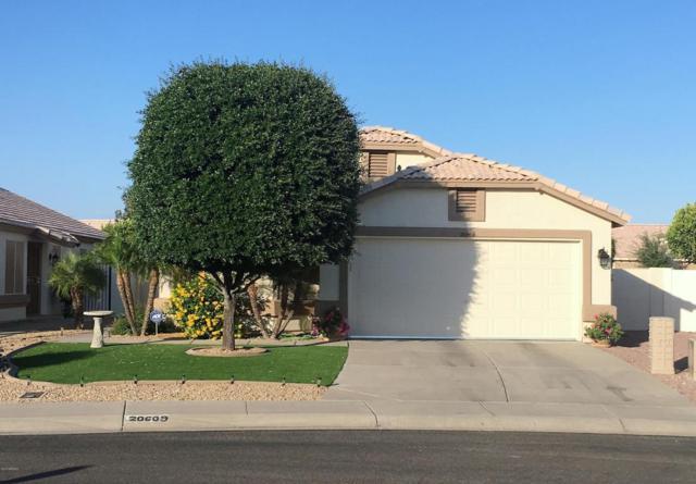 20609 N 105TH Avenue, Peoria, AZ 85382 (MLS #5761047) :: Desert Home Premier