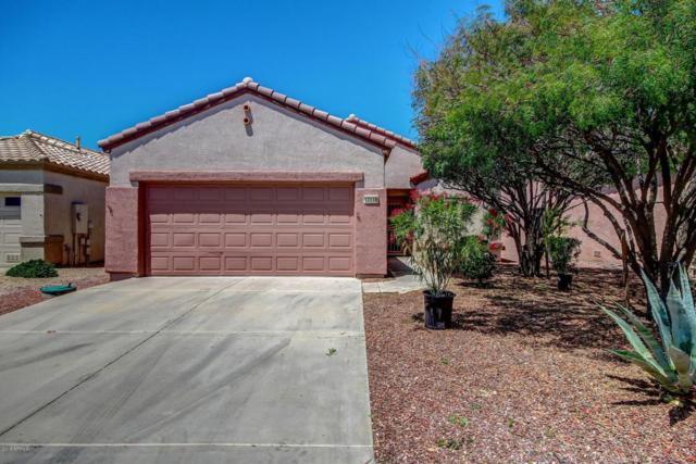 17118 N Estrella Vista Drive, Surprise, AZ 85374 (MLS #5761072) :: Lifestyle Partners Team