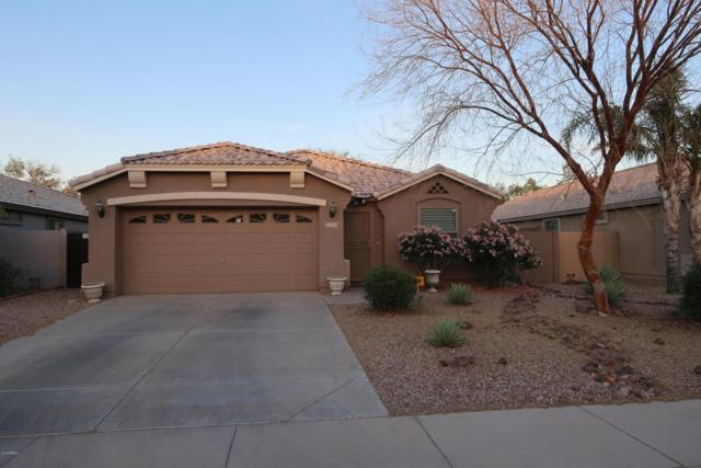 12945 N 147TH Drive, Surprise, AZ 85379 (MLS #5761090) :: Yost Realty Group at RE/MAX Casa Grande