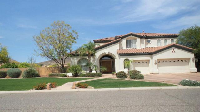 4510 W El Cortez Place, Phoenix, AZ 85083 (MLS #5761113) :: Occasio Realty