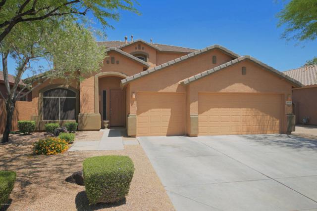 8328 W Molly Lane, Peoria, AZ 85383 (MLS #5761161) :: My Home Group