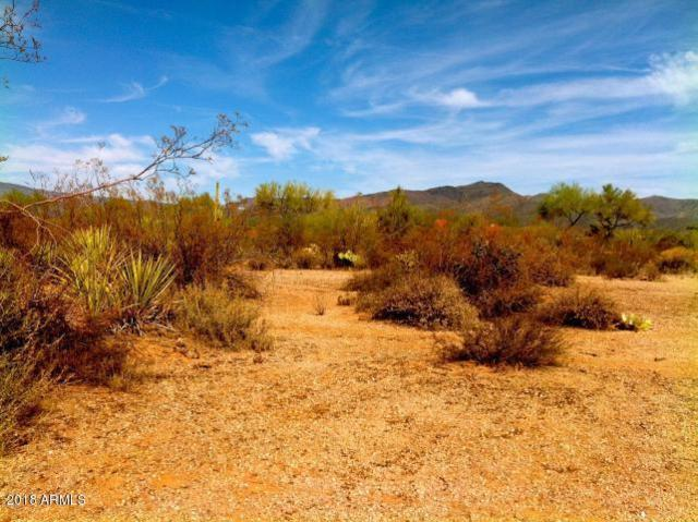 7713 E Cave Creek Road, Carefree, AZ 85377 (MLS #5761257) :: Riddle Realty