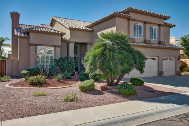 5031 W Hackamore Drive, Phoenix, AZ 85083 (MLS #5761308) :: Lifestyle Partners Team
