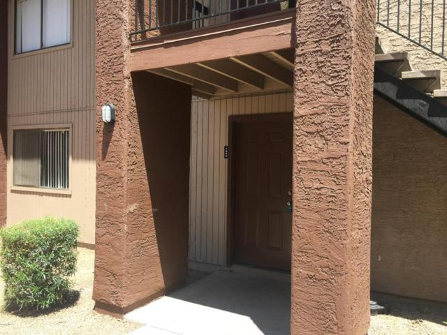 3810 N Maryvale Parkway #1094, Phoenix, AZ 85031 (MLS #5761349) :: The Laughton Team