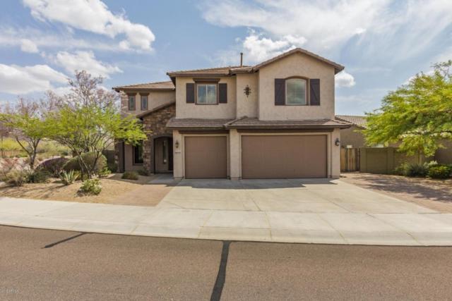 9015 W Molly Lane, Peoria, AZ 85383 (MLS #5761367) :: My Home Group