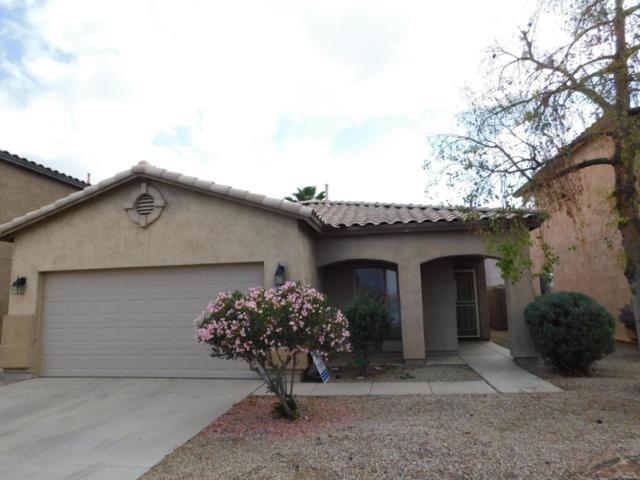 30064 N Desert Willow Boulevard, San Tan Valley, AZ 85143 (MLS #5761611) :: My Home Group