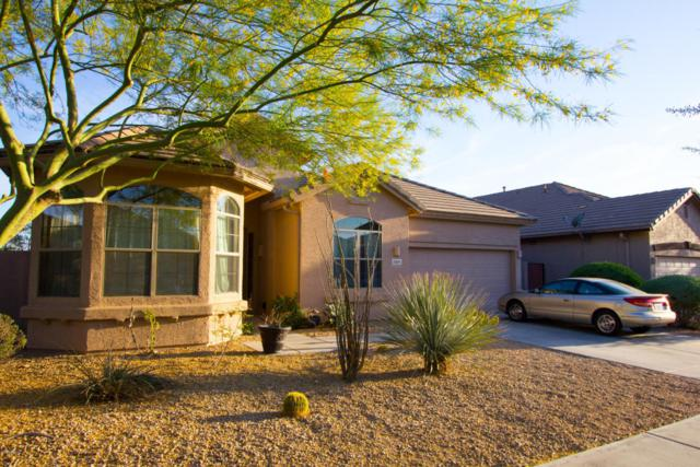 2405 W Apache Rain Road, Phoenix, AZ 85085 (MLS #5761664) :: Kepple Real Estate Group