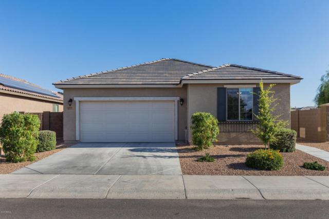 12133 W Tether Trail, Peoria, AZ 85383 (MLS #5761856) :: Essential Properties, Inc.