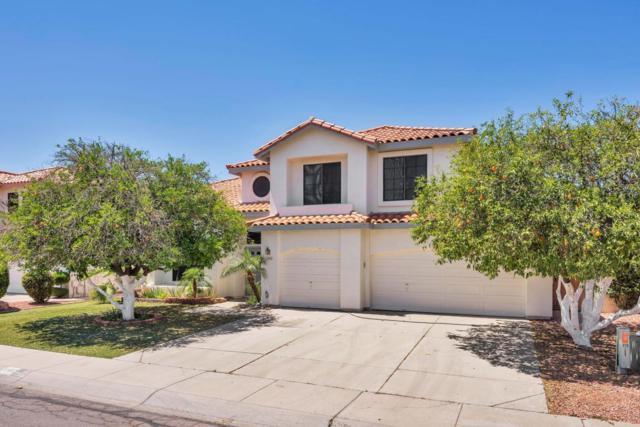 5462 W Dahlia Drive, Glendale, AZ 85304 (MLS #5762029) :: Essential Properties, Inc.