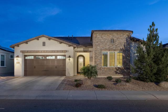 1317 E Corsia Lane, San Tan Valley, AZ 85140 (MLS #5762087) :: My Home Group