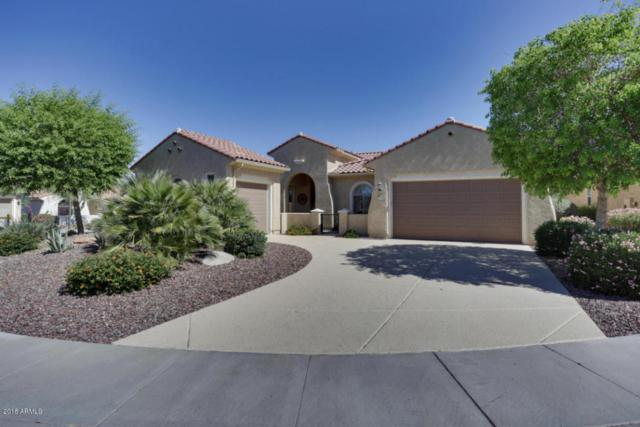 27318 W Runion Court, Buckeye, AZ 85396 (MLS #5762169) :: Yost Realty Group at RE/MAX Casa Grande