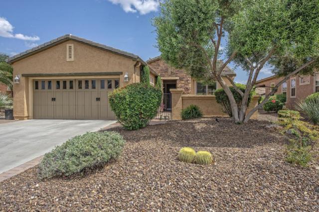 12905 W Bent Tree Drive, Peoria, AZ 85383 (MLS #5762347) :: Lux Home Group at  Keller Williams Realty Phoenix