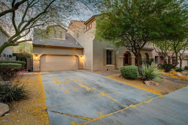 8362 W Rosewood Lane, Peoria, AZ 85383 (MLS #5762385) :: The Laughton Team
