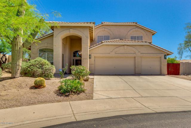 6763 E Villeroy Circle, Mesa, AZ 85215 (MLS #5762427) :: CC & Co. Real Estate Team